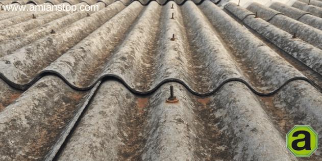 Vida til del amianto retirada de fibrocemento con for Fibrocemento sin amianto